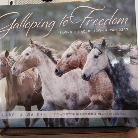 Galloping to Freedom Book