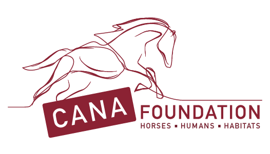 Cana Foundation logo red