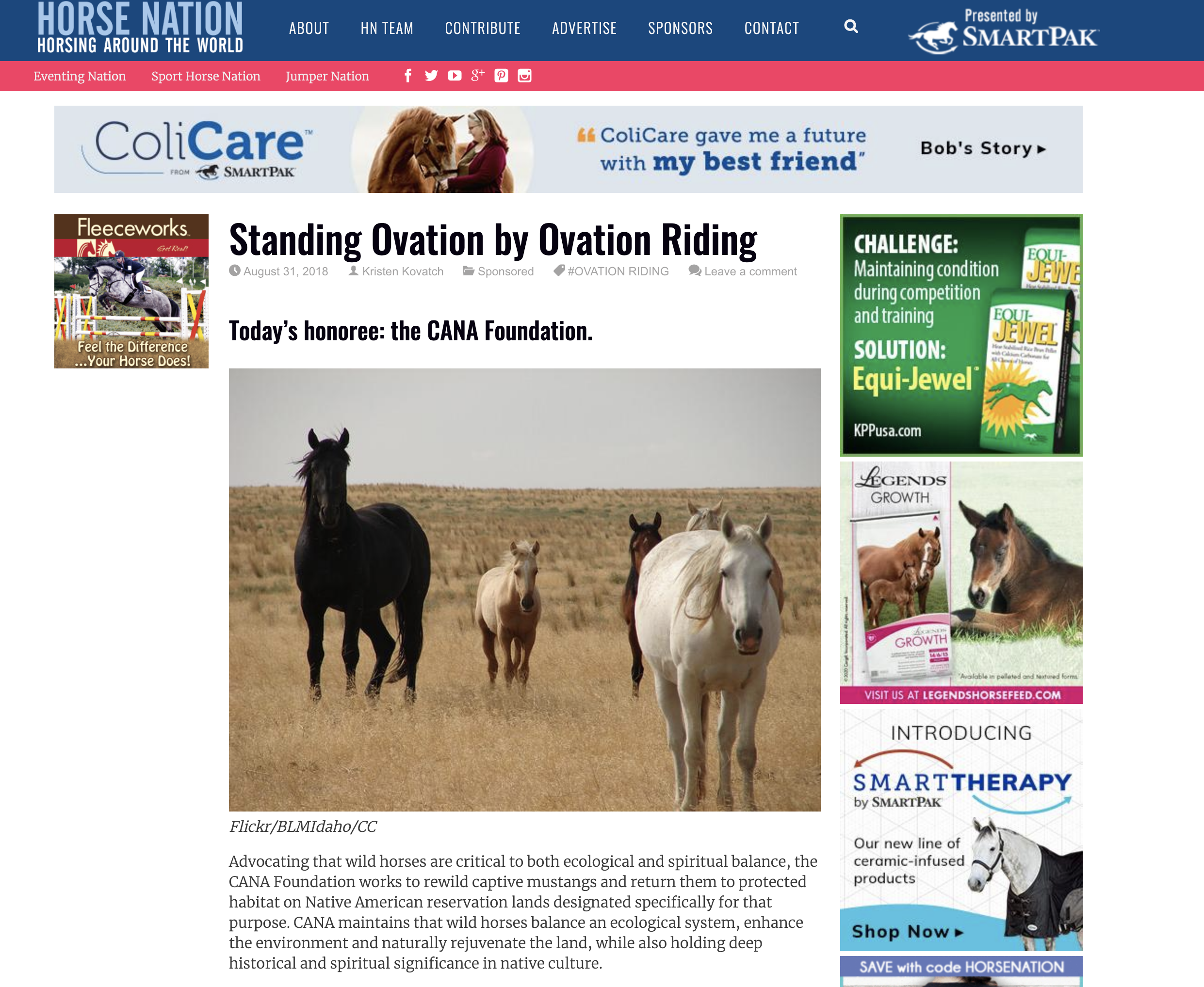 Horse Nation names Cana Foundation a top charity