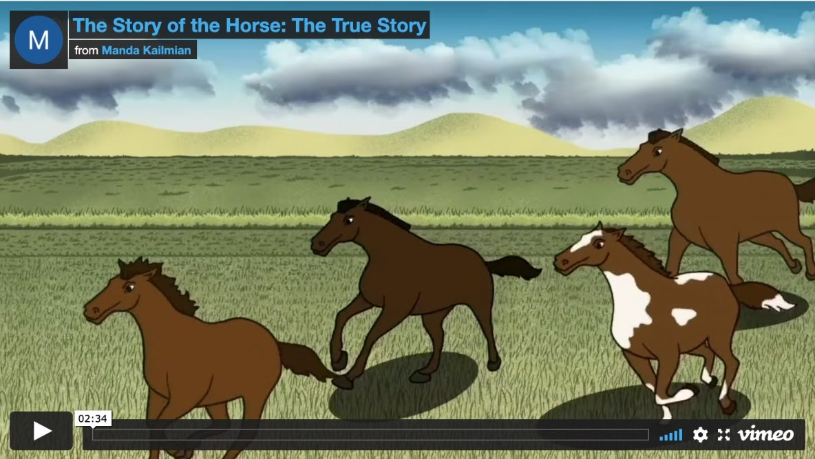 The Story of the Horse - Poster